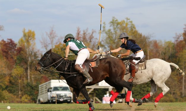Triangle Area Polo Hosting 'Battle of the Blues' Charity Match