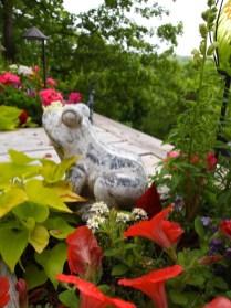 Lazarus Garden Frog In Deck Planter
