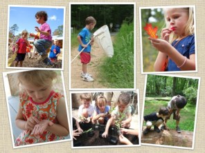 NCBG Children's Wonder Garden