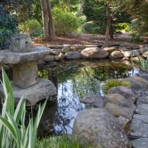 currier-the-unique-plant-garden-15_35362860755_o