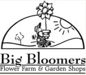 2020 Big Bloomers