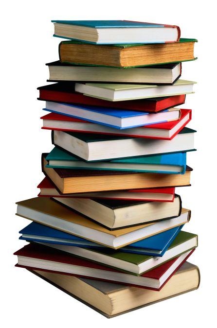 4245681-book