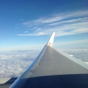 Wing shot, NYC bound.