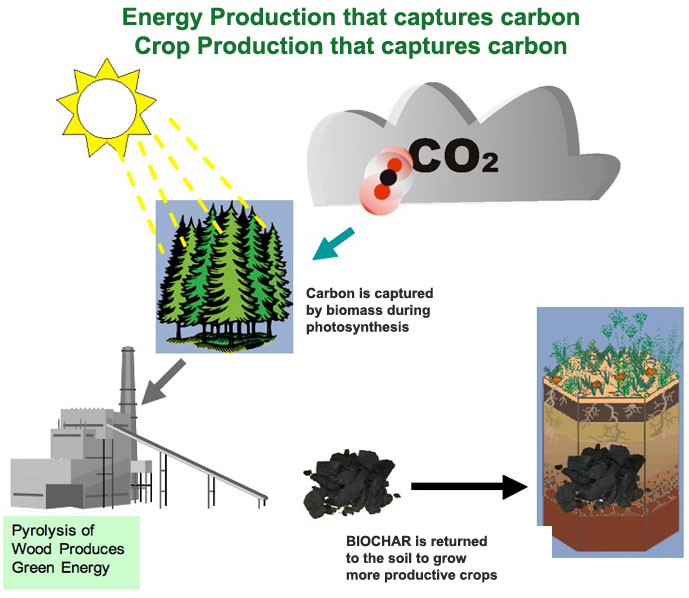 Diagram of energy and crop production carbon capture