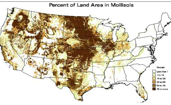 Percent of North American land area in Mollisols