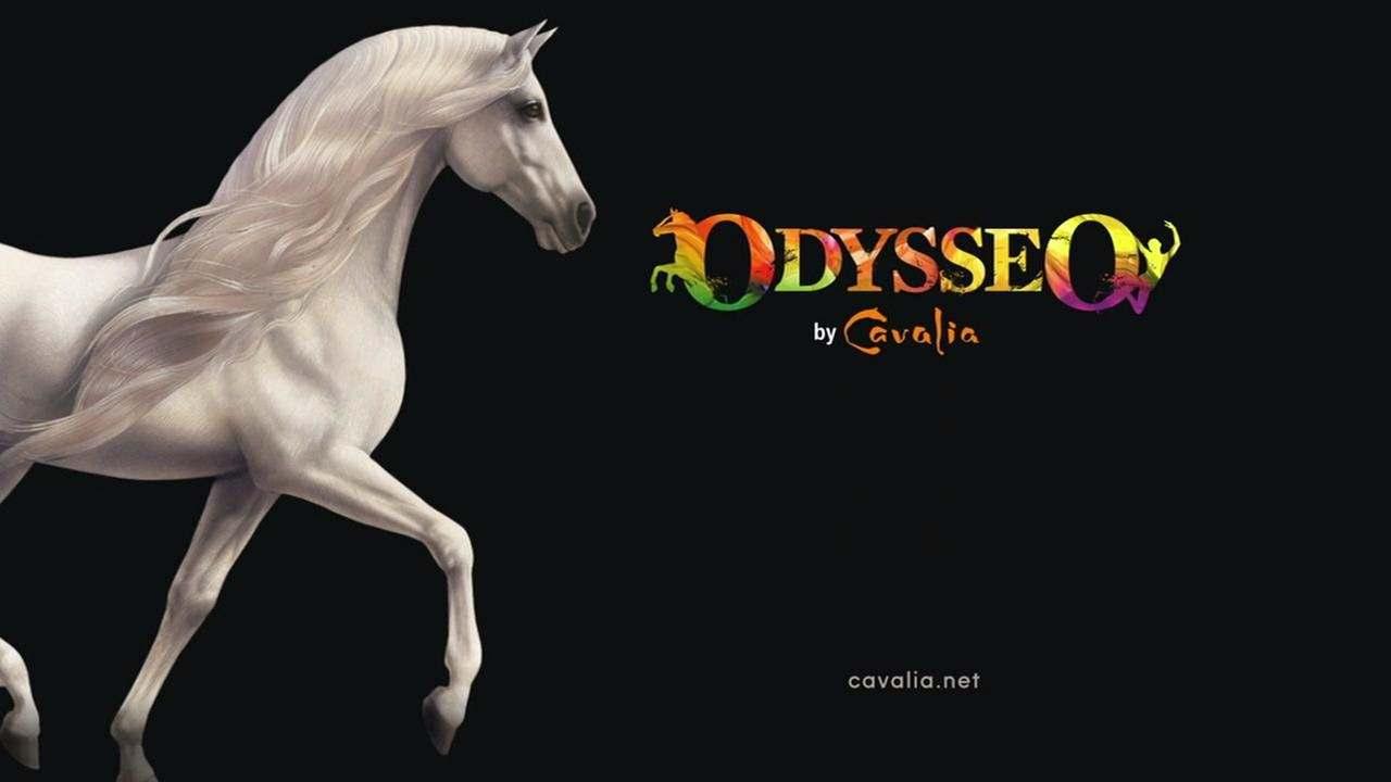 Movie, Odysseo by Cavalia(韓國, 2015年) / 夢幻舞馬-卡瓦利亞(台灣), 電影海報, 美國