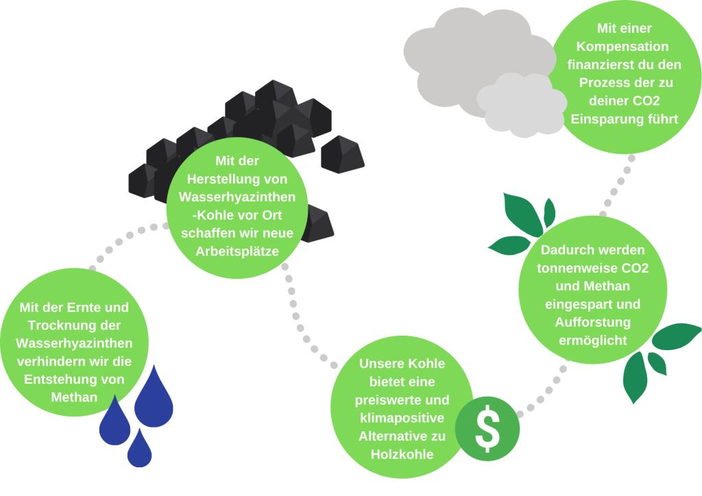 Schritt für Schritt Beschreibung wie Wasserhyazinthen-Kohle einen positiven Effekt auf Klima und Wirtschaft hat.
