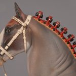 Draft Horse Bridle Charart
