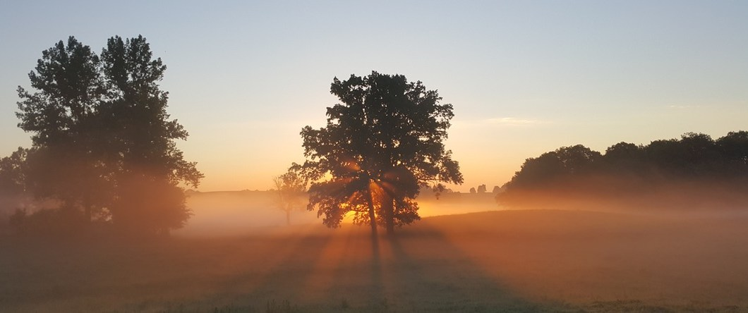 sunrise - Activated Charcoal: Natural Odor Eliminator For Hunters