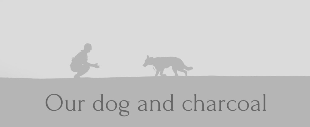 Our dog and charcoal 1024x421 - Our Dog and Charcoal - Malignant Melanoma