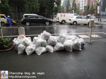 Pero hasta las bolsas de basura son casi ordenadas