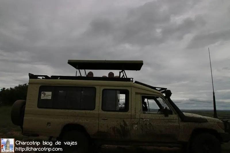 automovil-udare-masai-mara