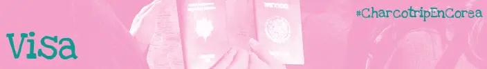 banner_visa