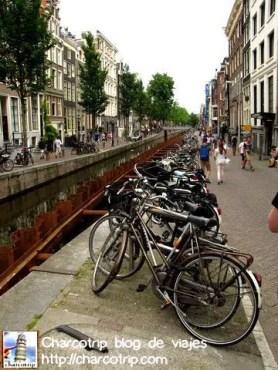 Bicicletas por todas partes :) aunque para mi la ciudad mas BikeFriendly del mundo sigue siendo Copenhague!
