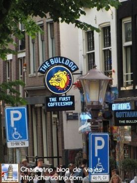 Uno de los coffeeshops mas famosos de la ciudad...