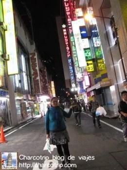 calle-akihabara-yyo