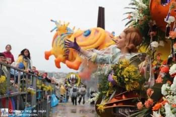 carnaval niza aventando mimosa