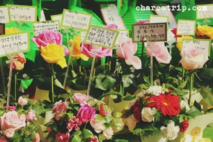 flores-jogyesa