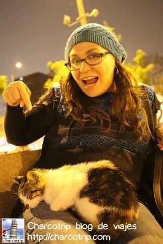 """El gato dijo """"esta es mi humana"""" :-o"""