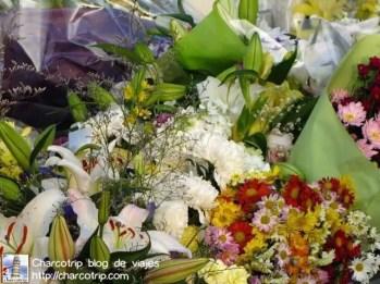 hiroshima-flores-tumba