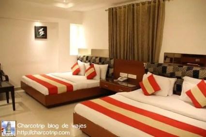 hotel-krishna-delhi3