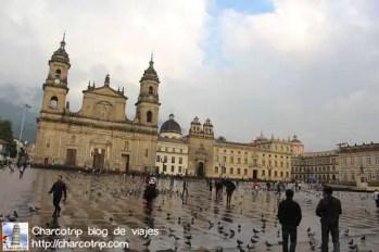 El reflejo en el piso después de la lluvia