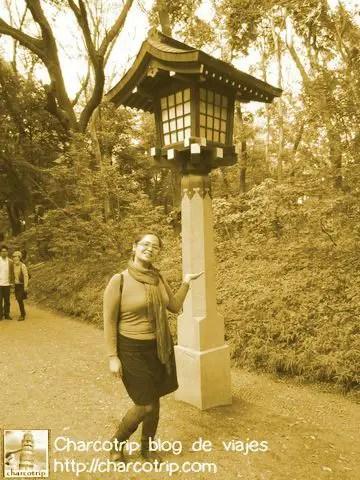 Una de las muchas lamparas en el camino hacia el santuario