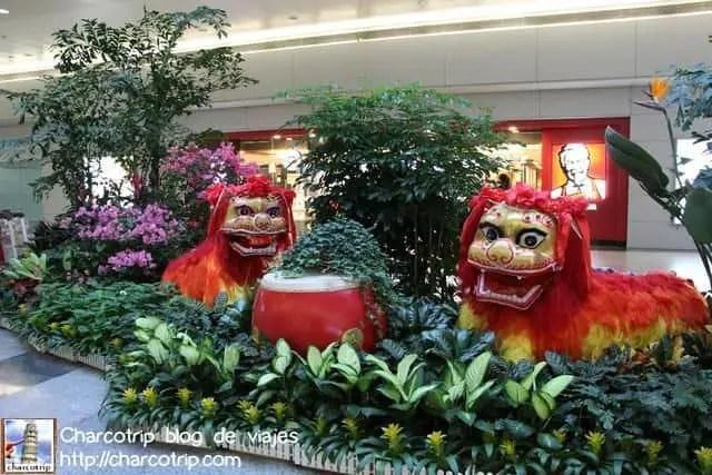 Los leones nos saludan de regreso al aeropuerto (con KFC detras)