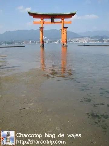 Marea baja, pero aun queda agua y se ve el reflejo