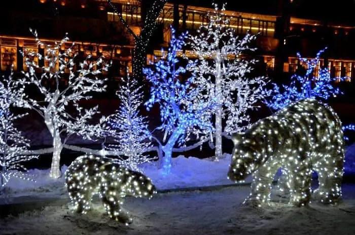 Osos polares en Moscu por Polviajero