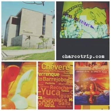 Museo del Caribe