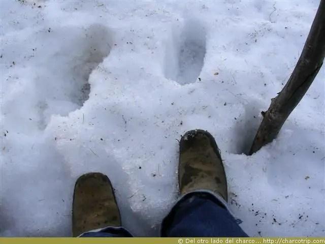 Ahi me di cuenta que la nieve quema y moja