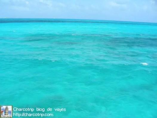 Aguas de la Riviera Maya