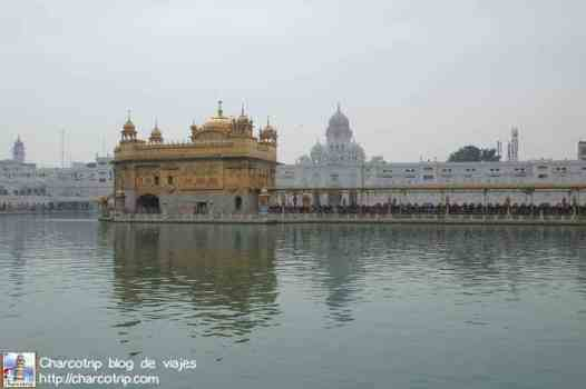 templo-dorado-amritsar6