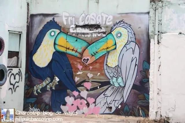 Tucanes enamorados