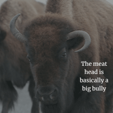 The meat head, or bully, is more of a domineering man than a dominant man