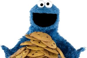 yep - its the cookie monster