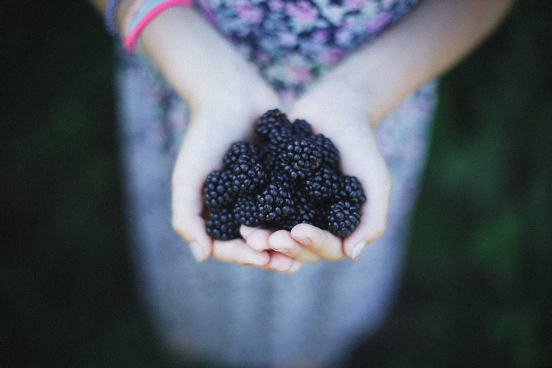 Being Human: A Guide To Picking the Perfect Blackberry