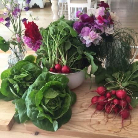 Produce from Karen Kennedy's garden. Photo: Karen Kennedy for Charis White Blog
