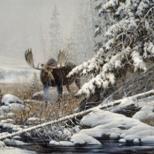 christmas-greeting-card-moose-walking-by-dr-laird.jpg