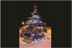 udraw_preview_Christmas_Tree_Night_lg