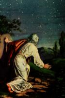 The Promise to Abraham_2020_4x6v