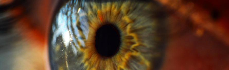 human-eye-995168_banner