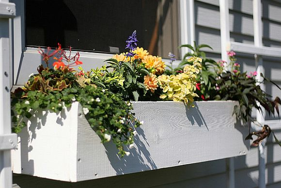 build your own window casement diywindowboxjpg build your own window boxes