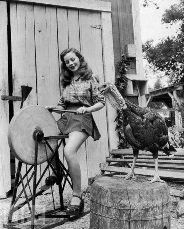 vintage-thanksgiving-pinupgirl.jpg
