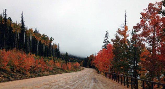 fall-colors-utah