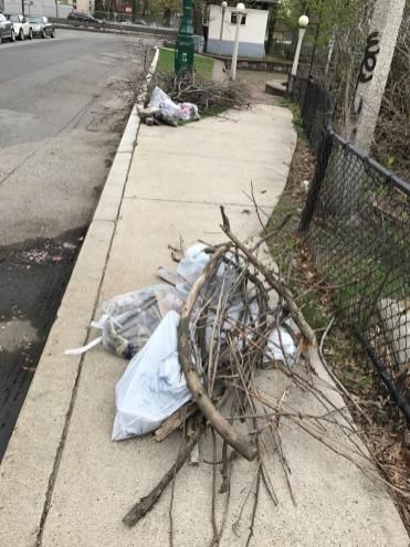 Uncollected trash and branches on Charlesgate East across from Somerset