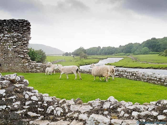Ogmore castle near the wales Coast Path, photographed by Charles hawes. Walking in Wales.
