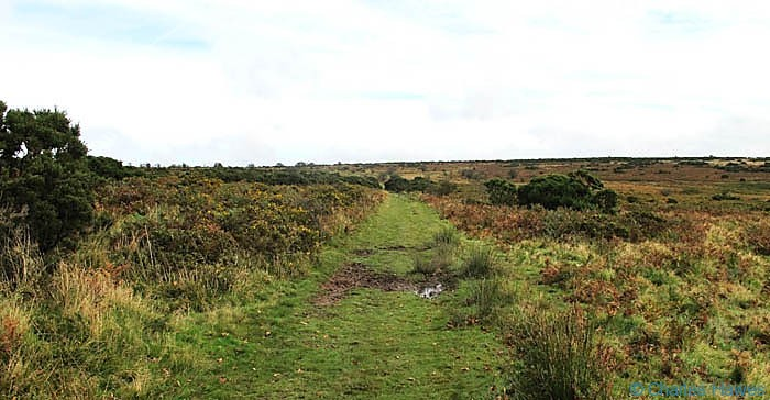 Path at the edge of the moor near Winsford Hill, Exmoor, photographed by Charles Hawes. Walking in Exmoor.