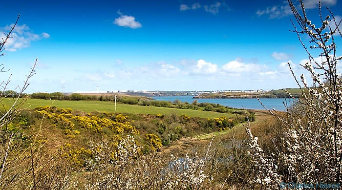 View to the confluence of the River Pembroke with Milford Haven, Pembrokshire, photographed by Charles Hawes